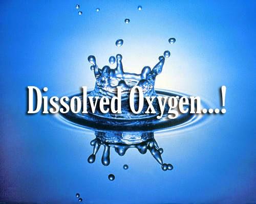 dissolved-oxygen