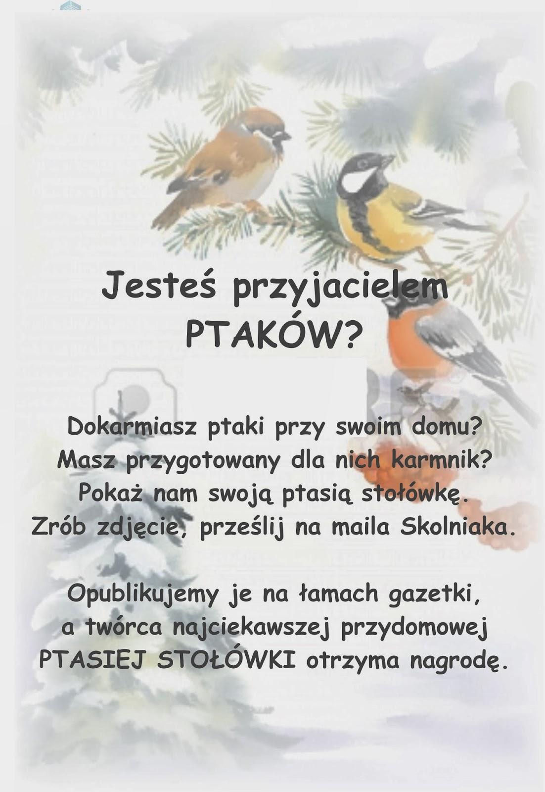 Klub Przyjaciół Ptaków Zimorodek Grudnia 2013
