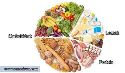 Katabolisme, Katabolisme Lemak, Katabolisme Protein, Mengubah Lemak Menjadi Energi, Mengubah Protein Menjadi Energi.