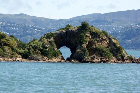 Matiu/Somes Island, Wellington