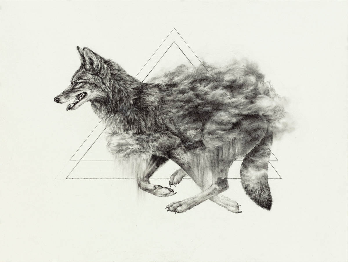 04-The-Rain-Dancer-Wolf-Sarah-Leea-Petkus-Animal-Drawings-Steeped-in-Symbolism-and-Surrealism-www-designstack-co