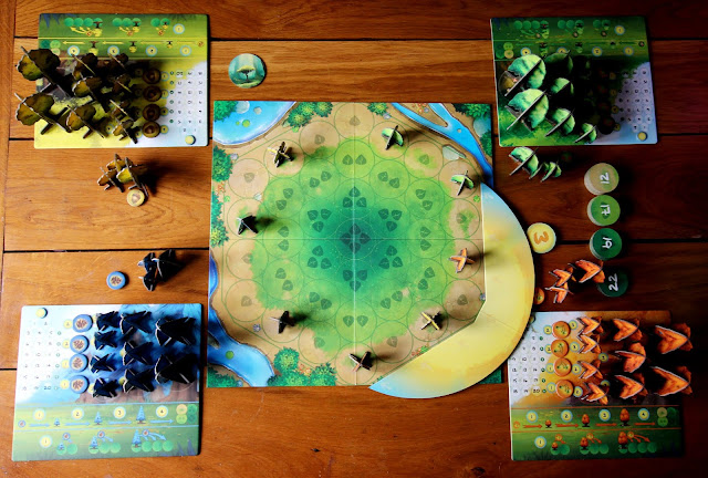 Photosynthesis setup | Random Nerdery board game review