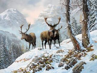 representativos-cuadros-con-animales-pinturas cuadros-animales-pinturas