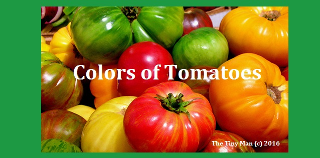 Colors of Tomatoes