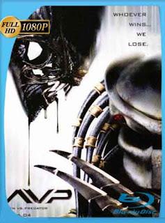 Alien vs Depredador 1  2004 HD [1080p] Latino [Mega] dizonHD