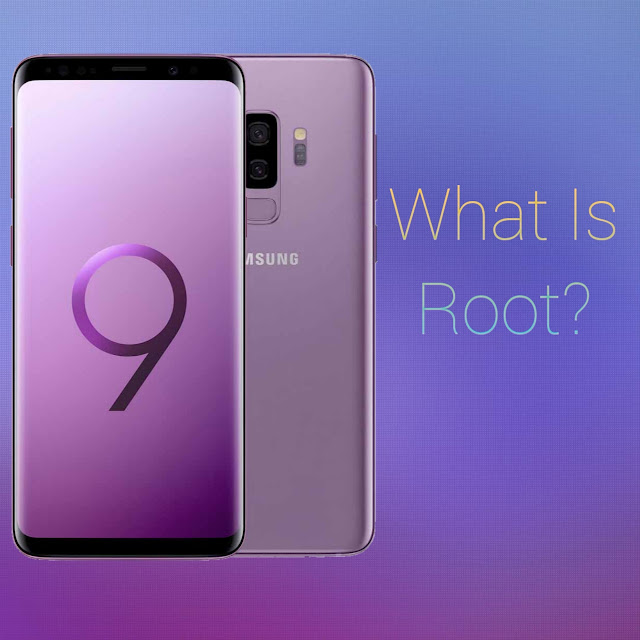 What is Root ?