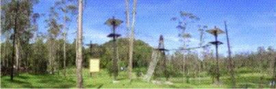 wisata ranca upas ciwidey