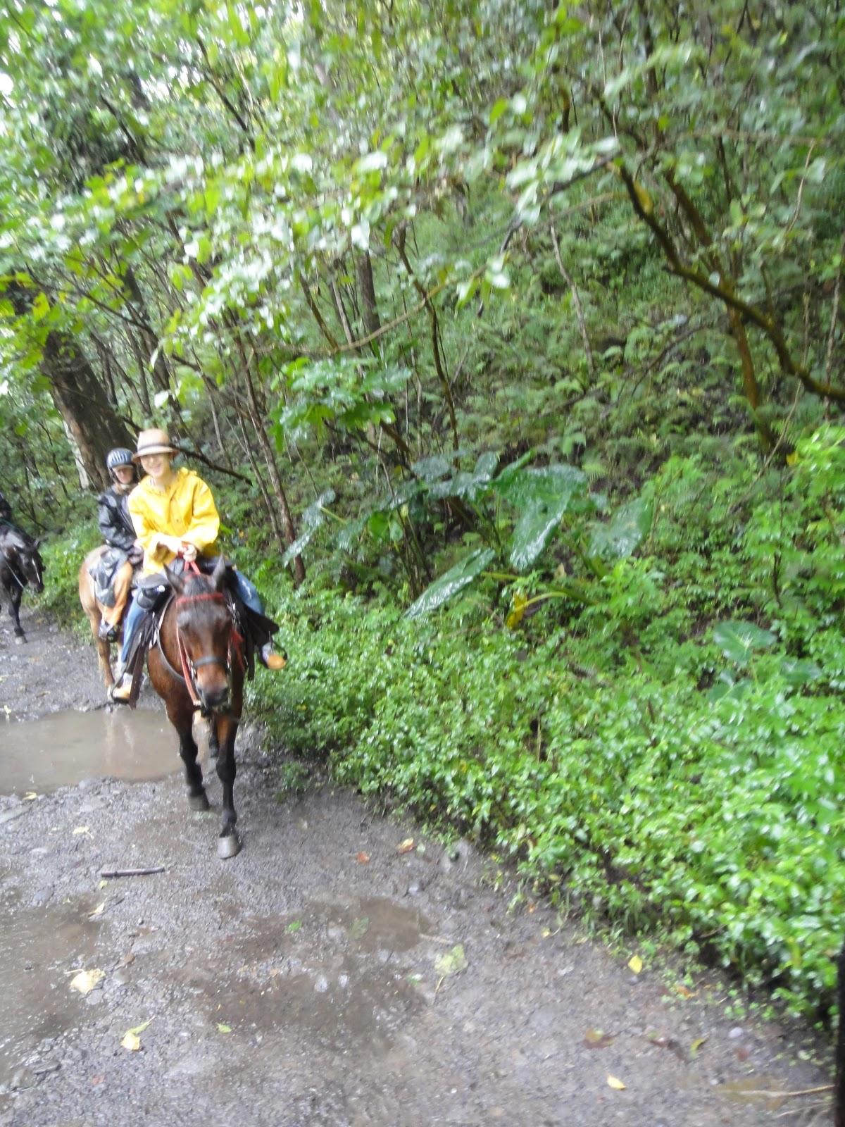 息をするように旅をする: ワイピオ渓谷で馬に乗った