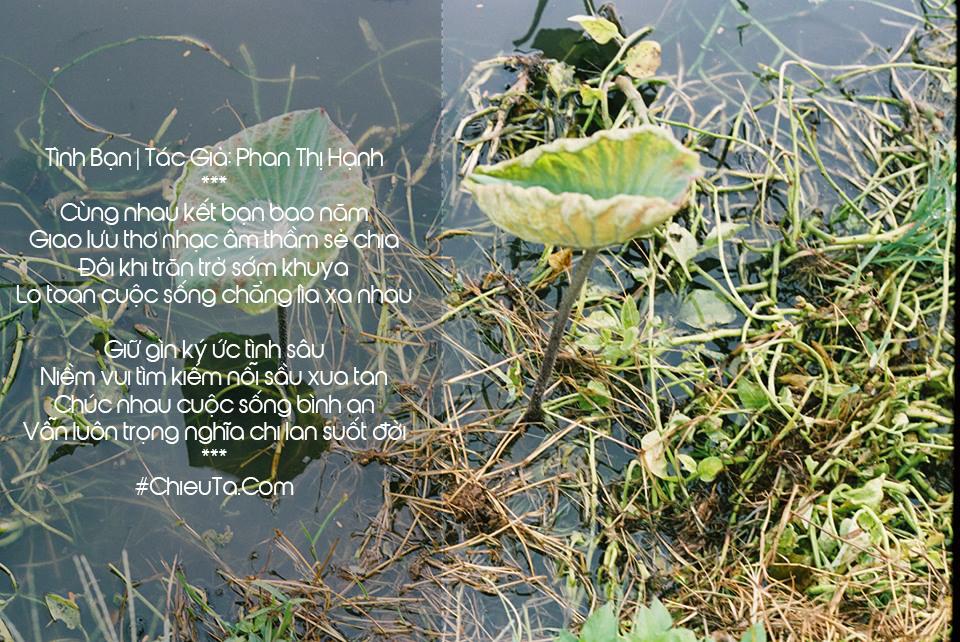 Thơ 6 Chữ Về Tình Bạn, 10 + Tập Thơ 6 Chữ Dạt Dào Cảm Xúc Tình Bạn