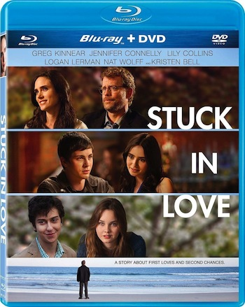 Stuck in Love 2012 Hindi Dual Audio BluRay Download