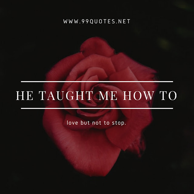 he taught me how to love but not to stop.