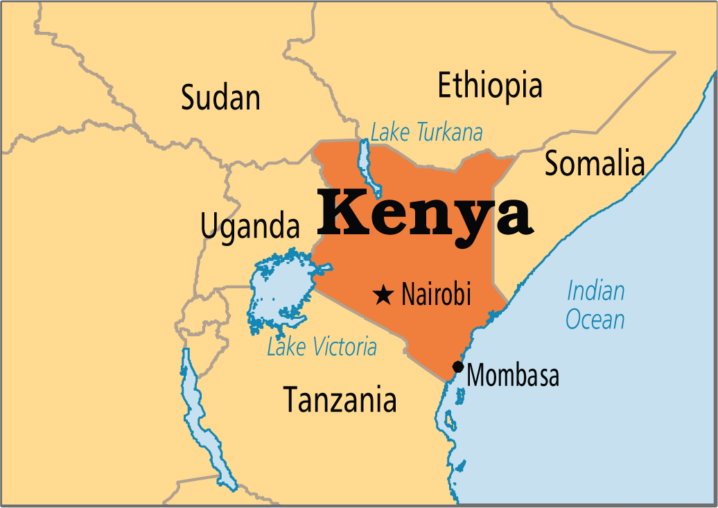 political and legal environment of kenya Aon political risks in sub-saharan africa 2014 power 1 2 sudan, south sudan, ethiopia, kenya, malawi, mozambique political tensions fuelled by poverty.