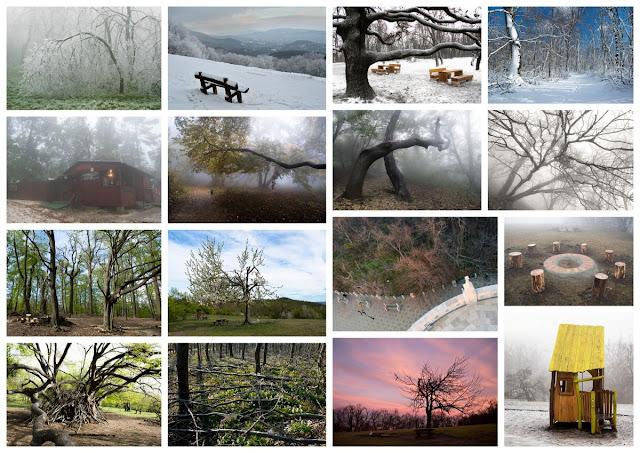 http://tortenetekkepekkel.blogspot.hu/p/budaorsi-koparok_15.html