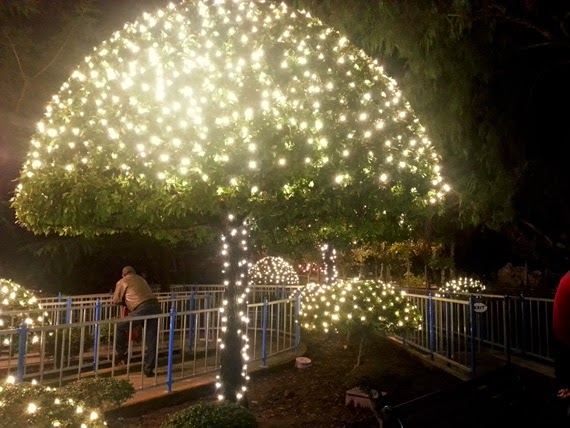So Recently I Was Excited When We Won A Pair Of Tickets To Gilroy Gardens Especially In The Month December They Also Have Their Holiday Lights