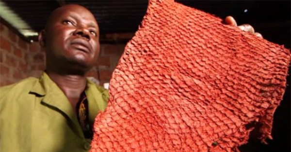 Newton Owino, founder of Black-owned dried fish skin business