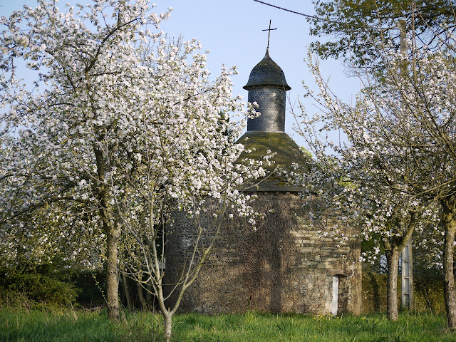 Chapelle manoir du Chatel Pipriac, sur fond de fruitiers en fleurs...