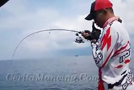 Hook Up Giant Spanish Mackerel With Jigging