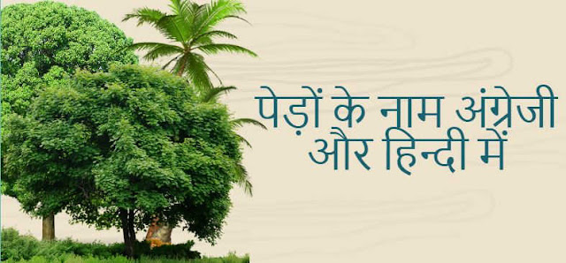 Names of Trees in English and Hindi