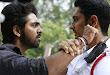 Erupu Pasupu Pacha Movie Stills