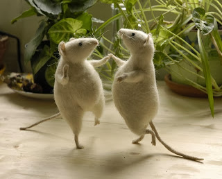 Cute Wombat Wallpapers Cute Funny Animalz Funny Animals With Dancing Images And