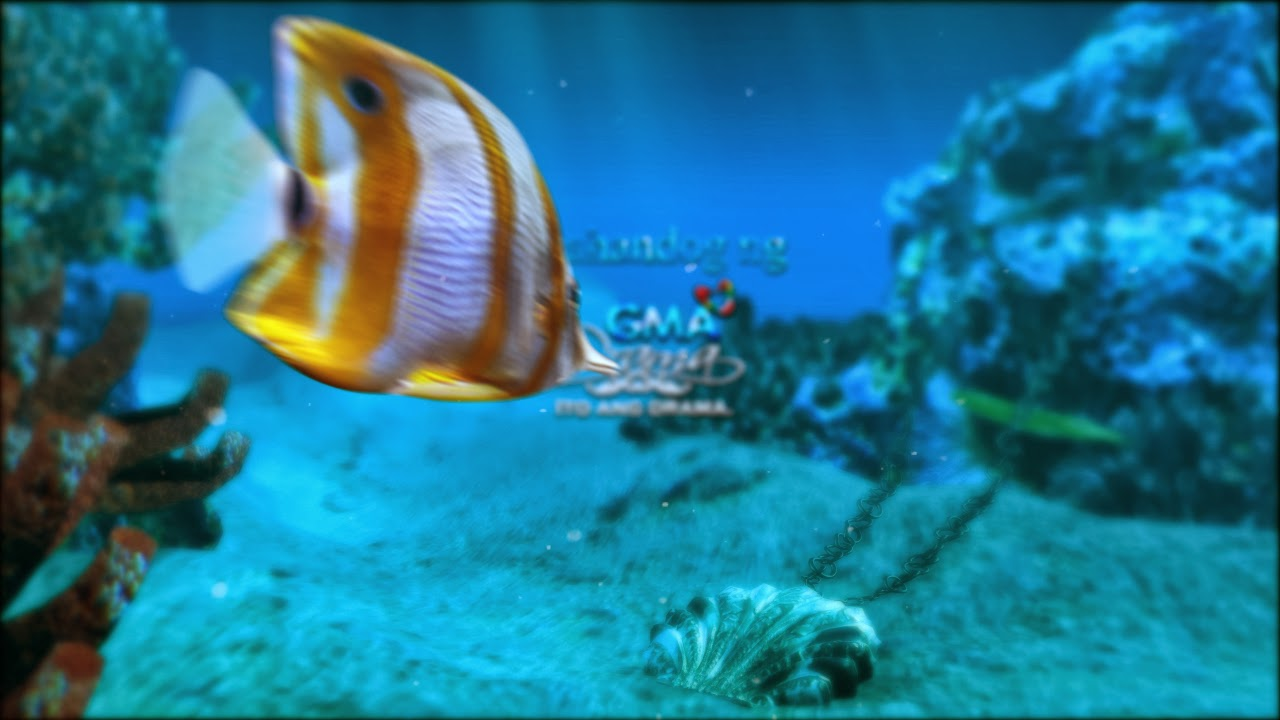 Underwater Visual Effects Project Photo