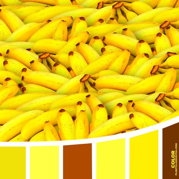 color_324