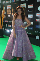Parul Yadav in Stunning Purple Sleeveless Transparent Gown at IIFA Utsavam Awards 2017  Day 2  Exclusive 13.JPG