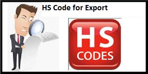 What is the Role of Harmonized System Codes