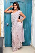 Nidhi Agarwal at Ismart Successmeet-thumbnail-4