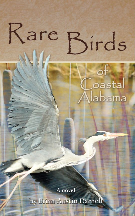 Rare Birds of Coastal Alabama- click on book cover
