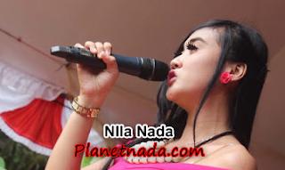 Download Kumpulan Lagu Dangdut Nila Nada Mp3 Terbaru Lengkap