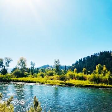 My Idaho