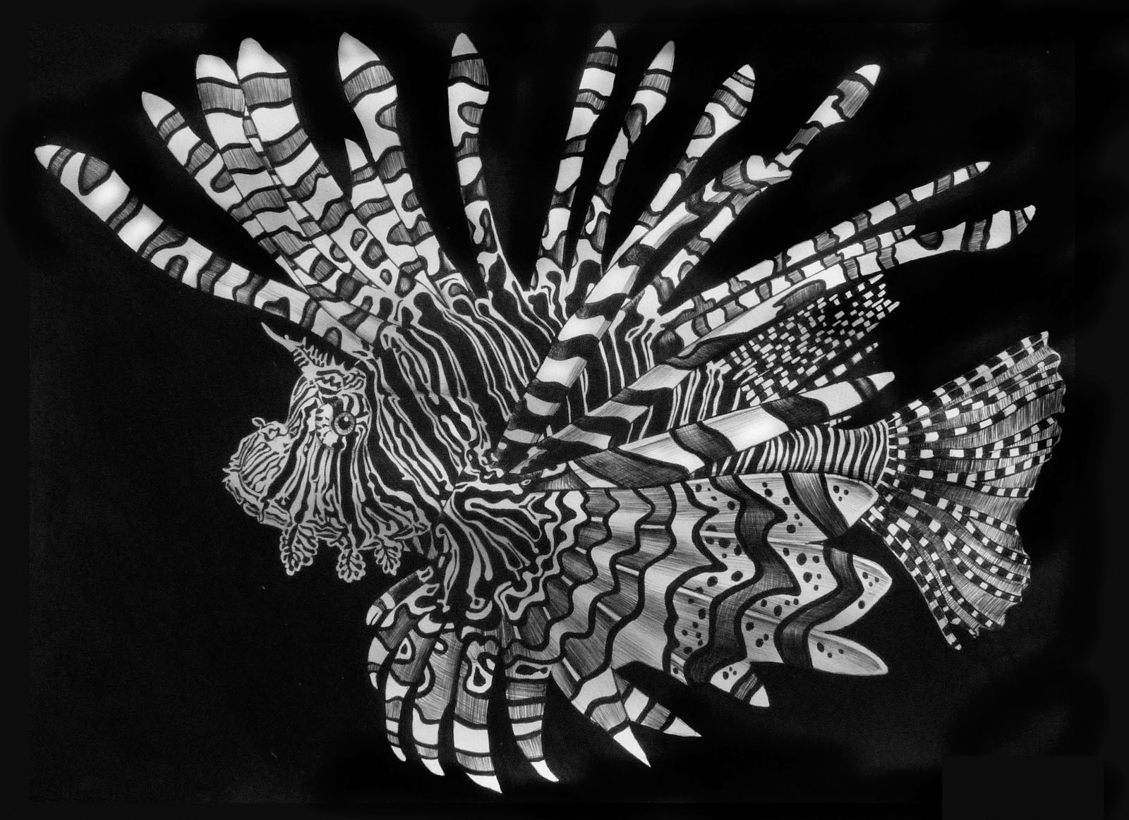 01-Lionfish-Tim-Jeffs-All-Creatures-Great-and-Small-Ink-Drawings-www-designstack-co