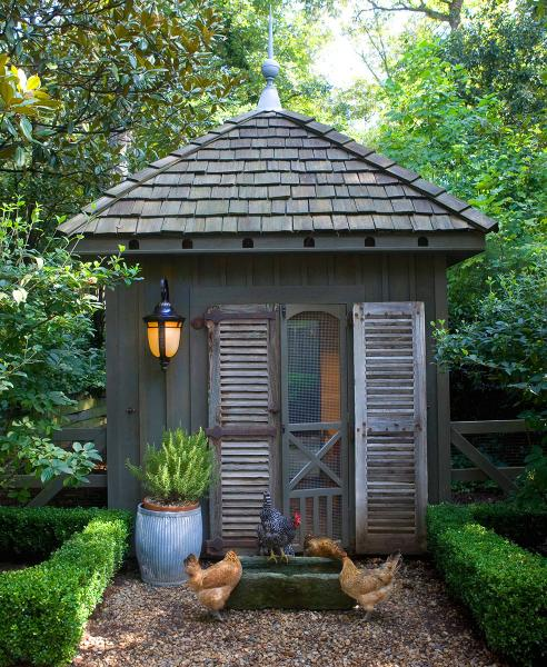 Color Outside The Lines: Chicken Coops