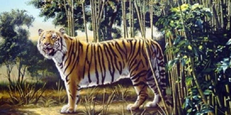 WOW Ada 2 Harimau di Gambar Ini Satunya Tersembunyi