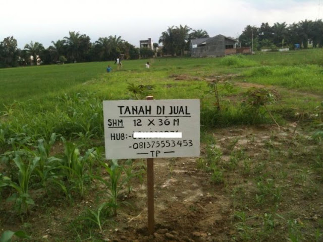 Harga Tanah-Rumah Terus Naik Tak Terkira, Mungkin Semungil ini Nanti Rumah Generasi Kita