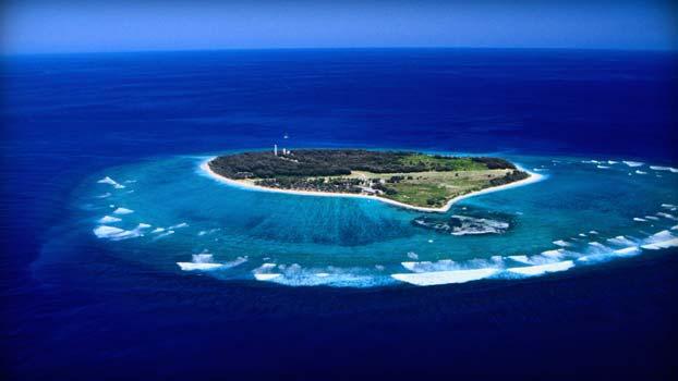 goo island