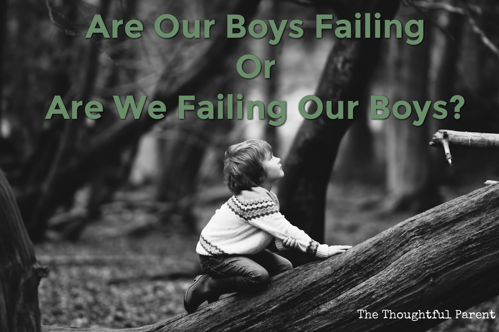 are boys in crisis in our The evidence suggests otherwise: the truth about boys and girls by: sara mead a new crisis the source of the boy crisis: leonard sax's why gender matters, and hear our cry: boys in crisis, by paul d slocumb a review of these books shows that the boys industry is hardly monolithic.