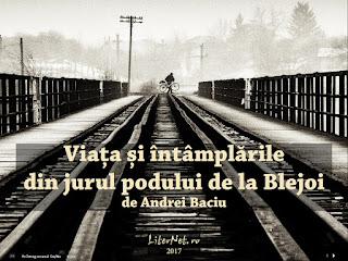 https://editura.liternet.ro/carte/347/Andrei-Baciu/Viata-si-intamplarile-din-jurul-podului-de-la-Blejoi.html