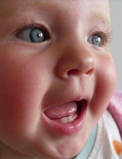LO SVILUPPO DEI DENTI NEL BAMBINO bambinimamme