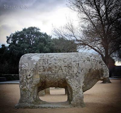 Del Castañar de El Tiemblo a los Toros de Guisando (Ávila)