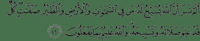 Surat An Nur ayat 41