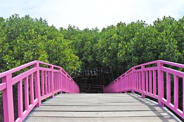 Jembatan Cinta Dewi Mangrovesari