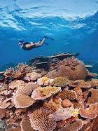 Trip to Australia - Explores of Queensland's Natural Gems