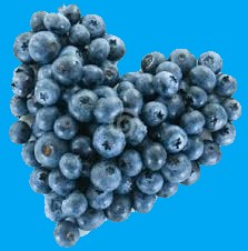 Blueberry 10 Foods That Can Save Your Heart