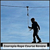 Boy crossing a log bridge on the Zooropia rope course.