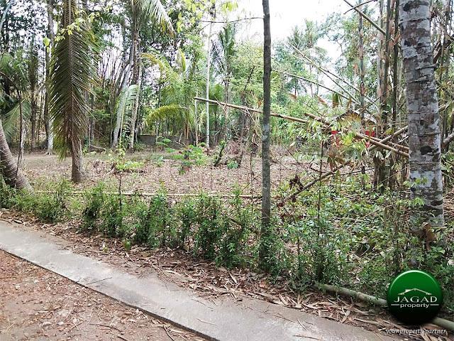 Tanah dekat Tugu Brosot Kulonprogo