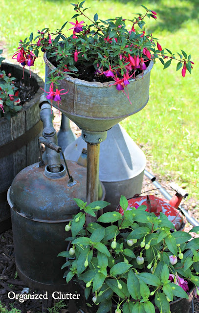 Adding Vertical Interest to the Container Garden www.organizedclutter.net