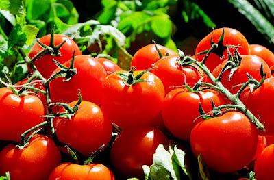 conservación, alimentos, industria alimentaria, congelación, refrigeración, pasteurización, esterilización