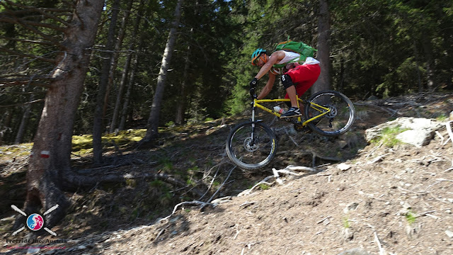mountainbike brixen plose hardtail enduro